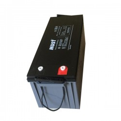 200 Amp Hour 12V - Absorbed Glass Mat MUST - FDC12-200-AGM